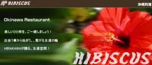 hibiscus001